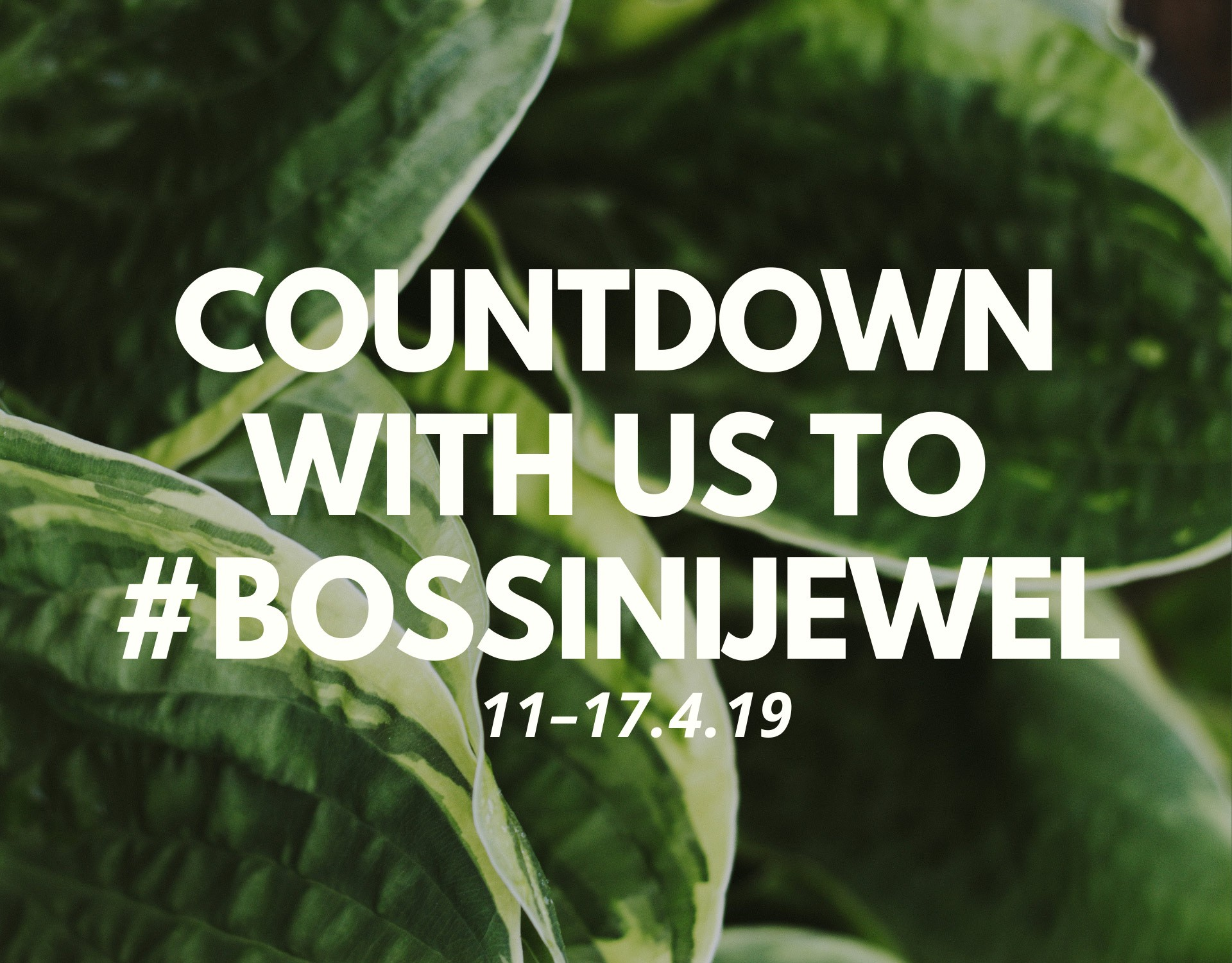 countdown-to-bossini-jewel-intro